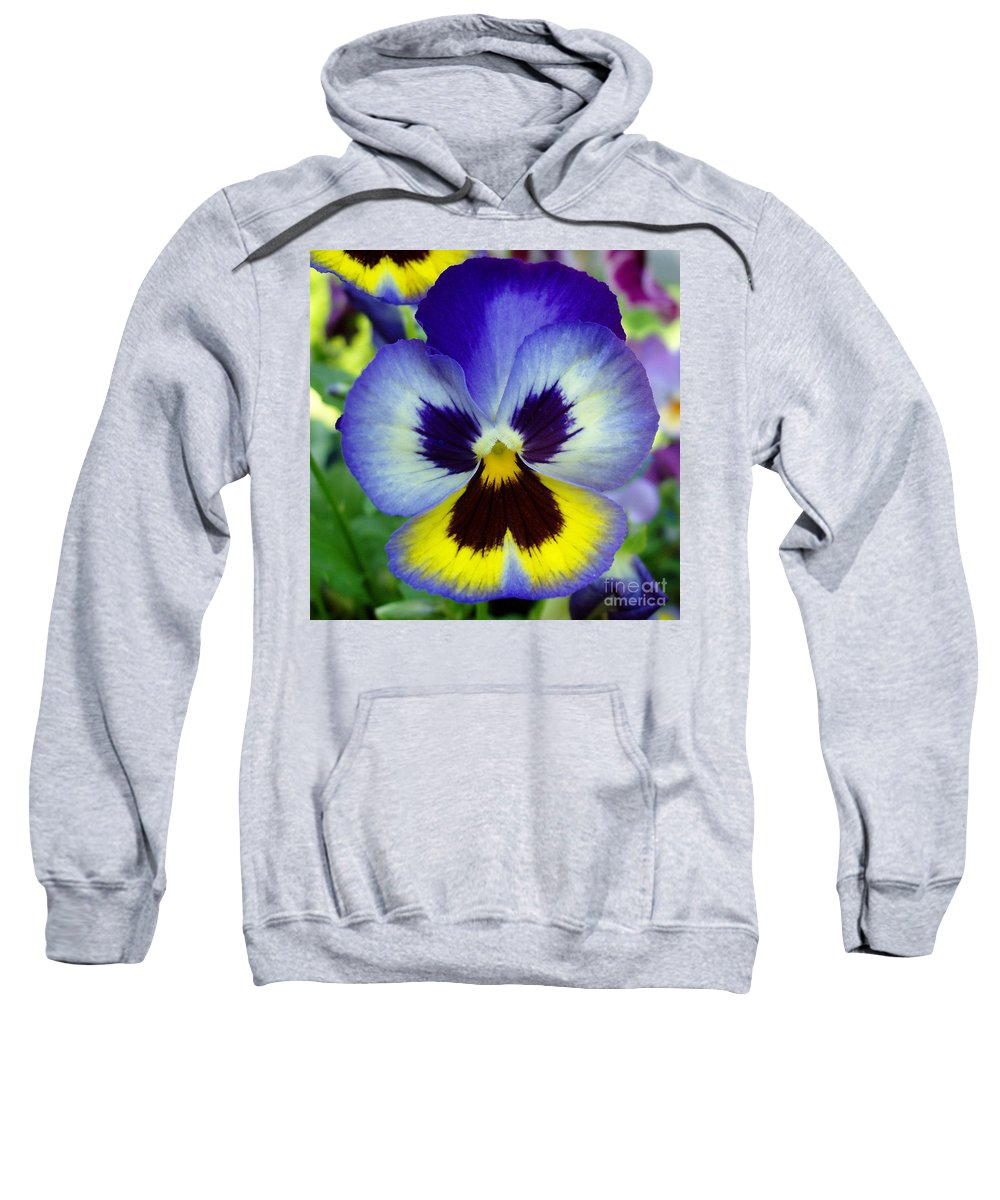 Flowers Sweatshirt featuring the photograph Blue And Yellow Pansy by Nancy Mueller