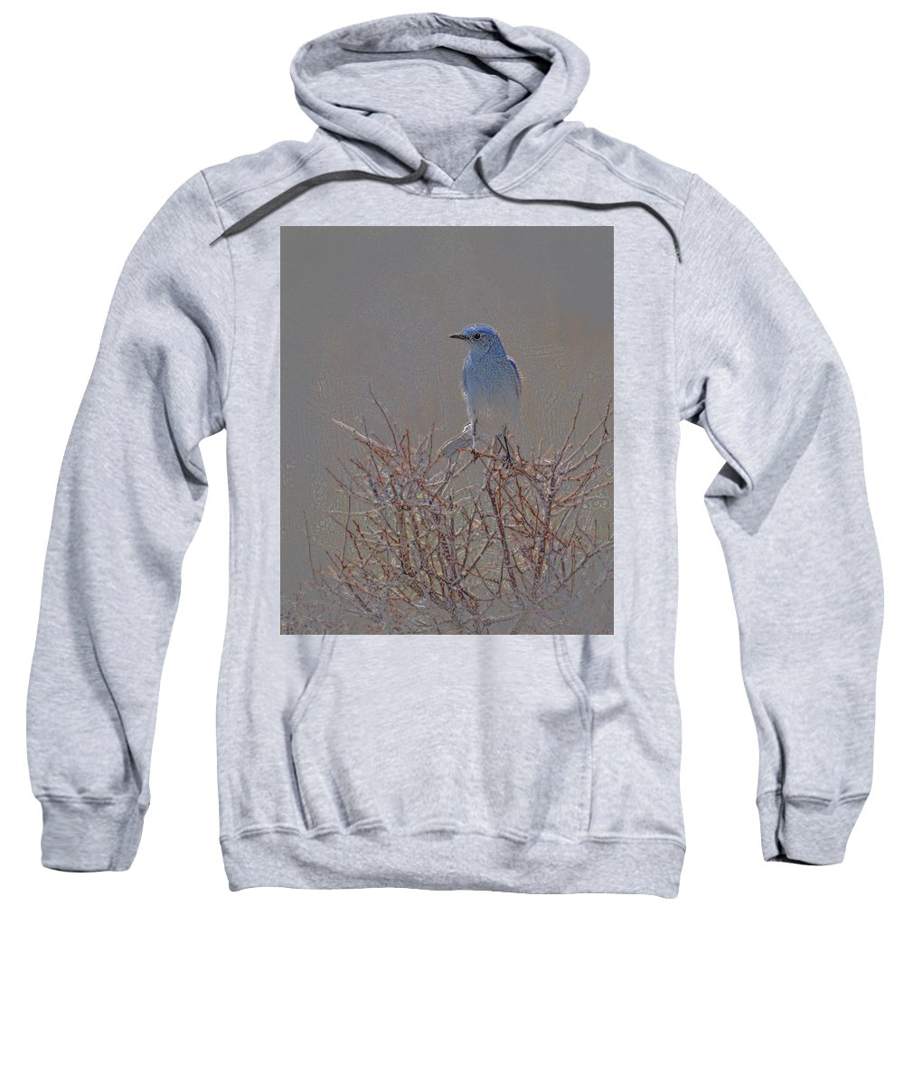 Colored Pencil Sweatshirt featuring the photograph Blue Bird Colored Pencil by Heather Coen