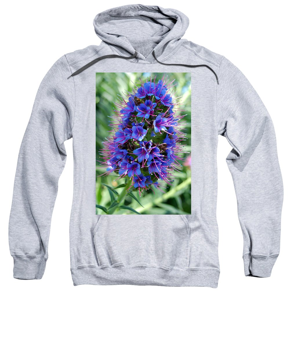 Flower Sweatshirt featuring the photograph Blue Flowers by Amy Fose