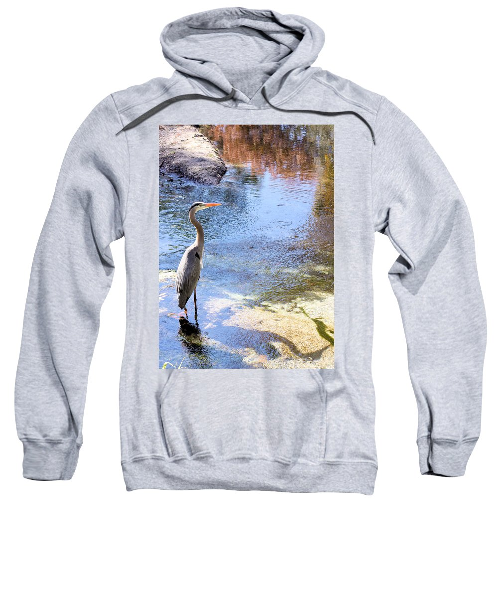 Great Blue Heron Sweatshirt featuring the photograph Blue Heron With Shadow by Kristin Elmquist