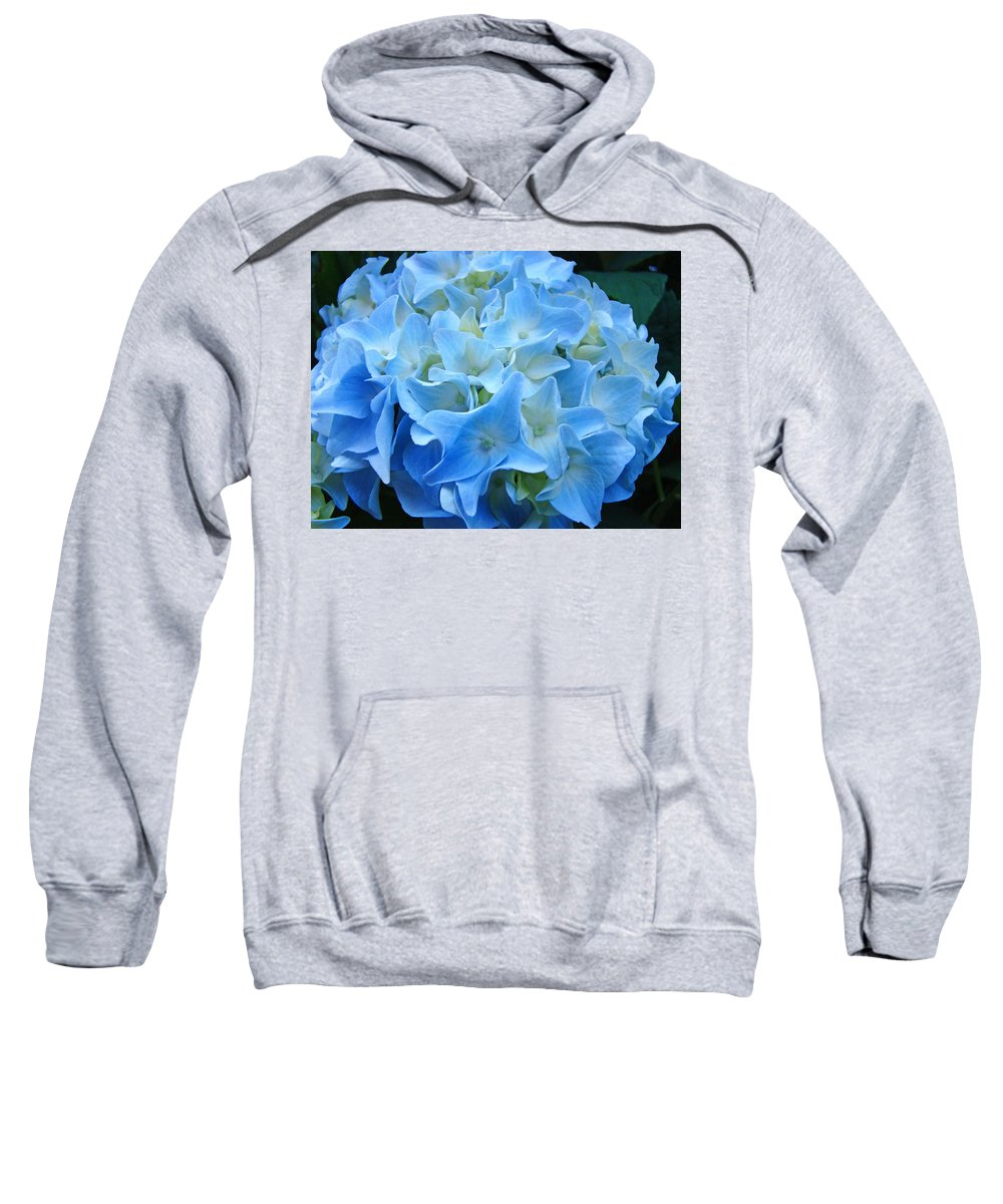 Blue Sweatshirt featuring the photograph Blue Hydrangea Floral Flowers Art Prints Baslee Troutman by Baslee Troutman