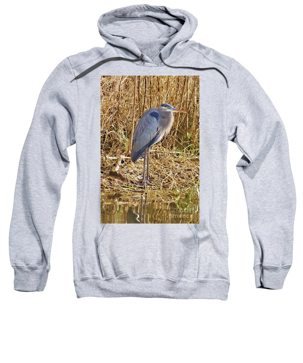Blue Heron Sweatshirt featuring the photograph Blue In Blue Springs 2010 by Deborah Benoit