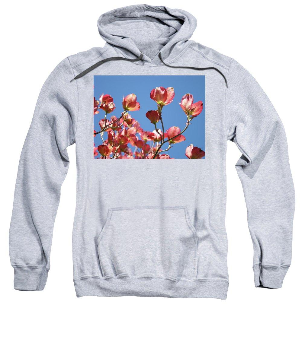 Dogwood Sweatshirt featuring the photograph Blue Sky Art Prints Pink Dogwood Flowers 16 Dogwood Tree Art Prints Baslee Troutman by Baslee Troutman