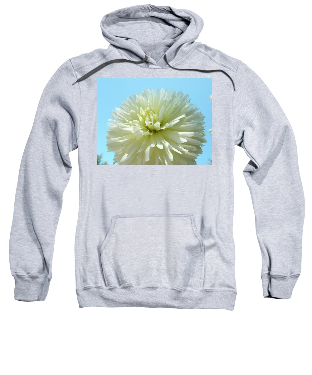 Dahlia Sweatshirt featuring the photograph Blue Sky Art White Dahlia Flower Floral Prints Baslee Troutman by Baslee Troutman