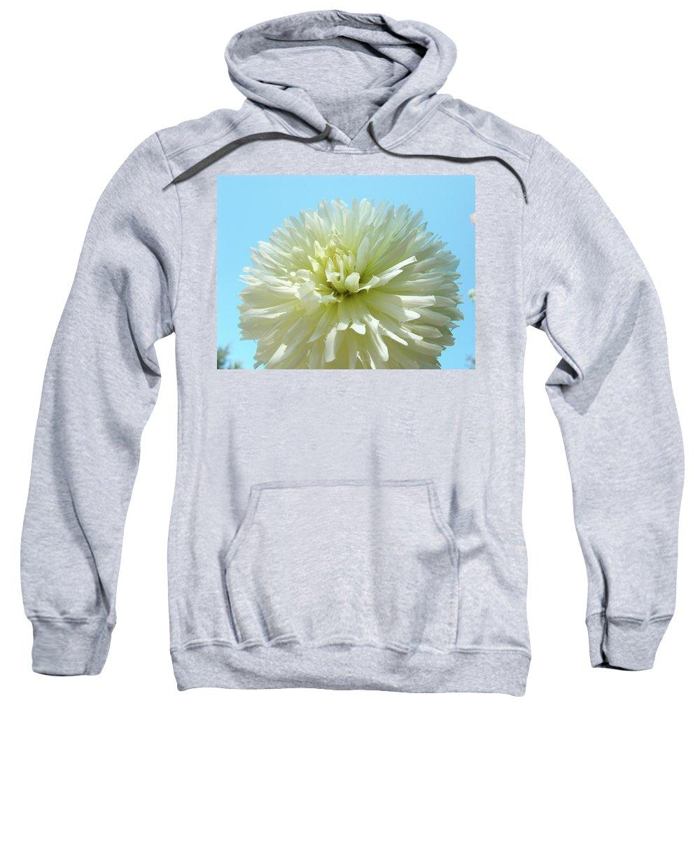 Dahlia Sweatshirt featuring the photograph Blue Sky Art White Dahlia Flower Floral Prints Baslee Troutman by Baslee Troutman