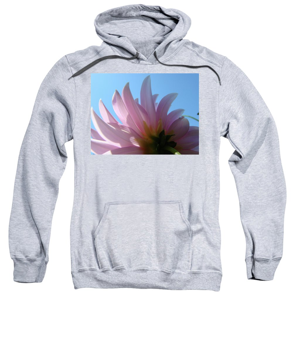 Dahlia Sweatshirt featuring the photograph Blue Sky Floral Art Print Pink Dahlia Flower Baslee Troutman by Baslee Troutman