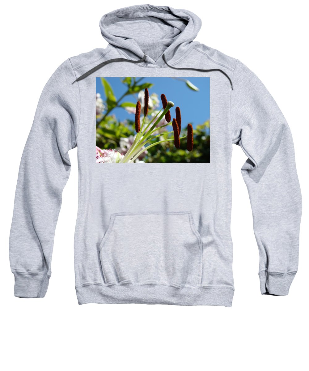 Lilies Sweatshirt featuring the photograph Blue Sky Sunny Floral Pink Lily Flower Baslee Troutman by Baslee Troutman