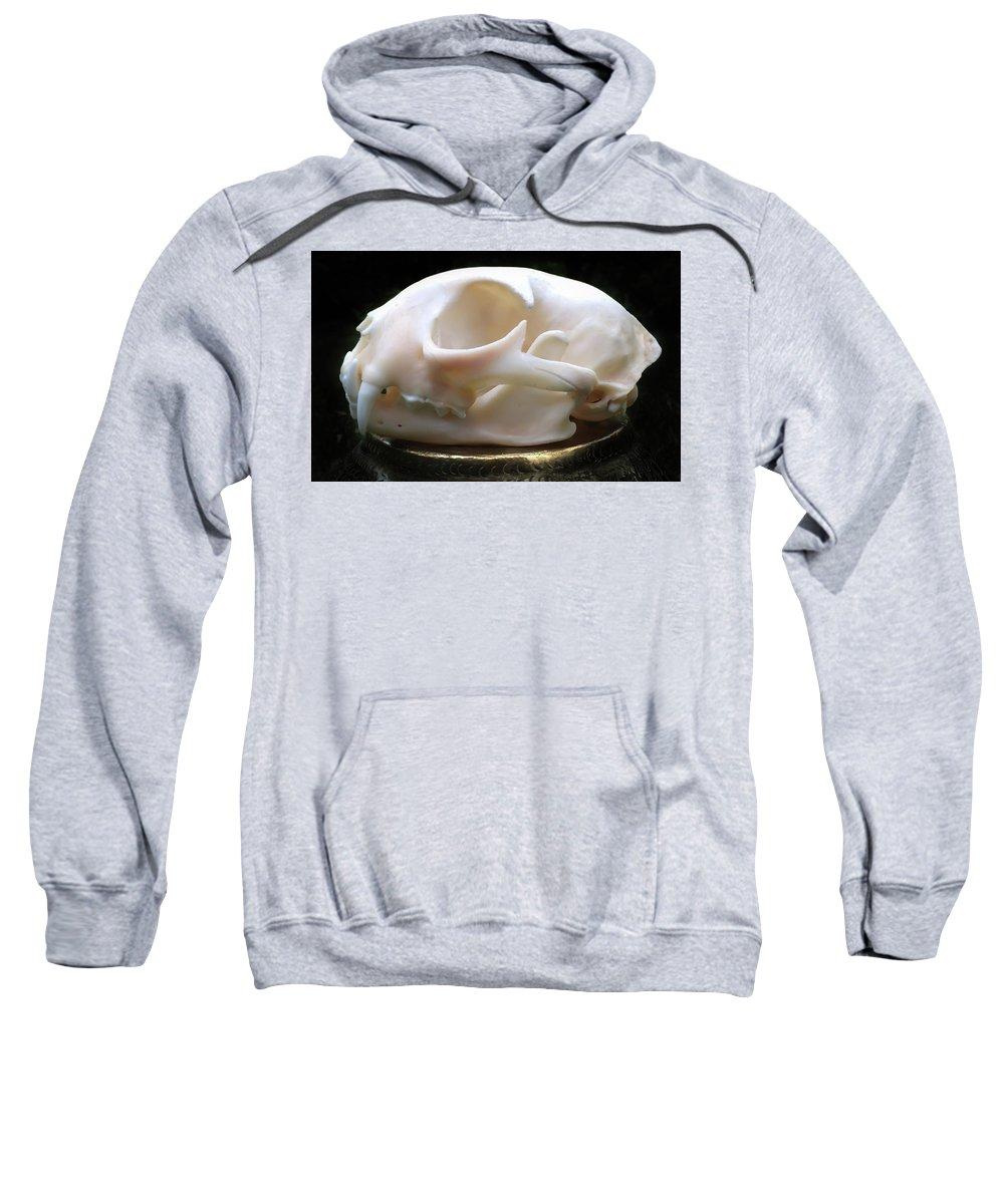 Bobcat Skull Sweatshirt featuring the photograph Bobcat by Ronda Broatch