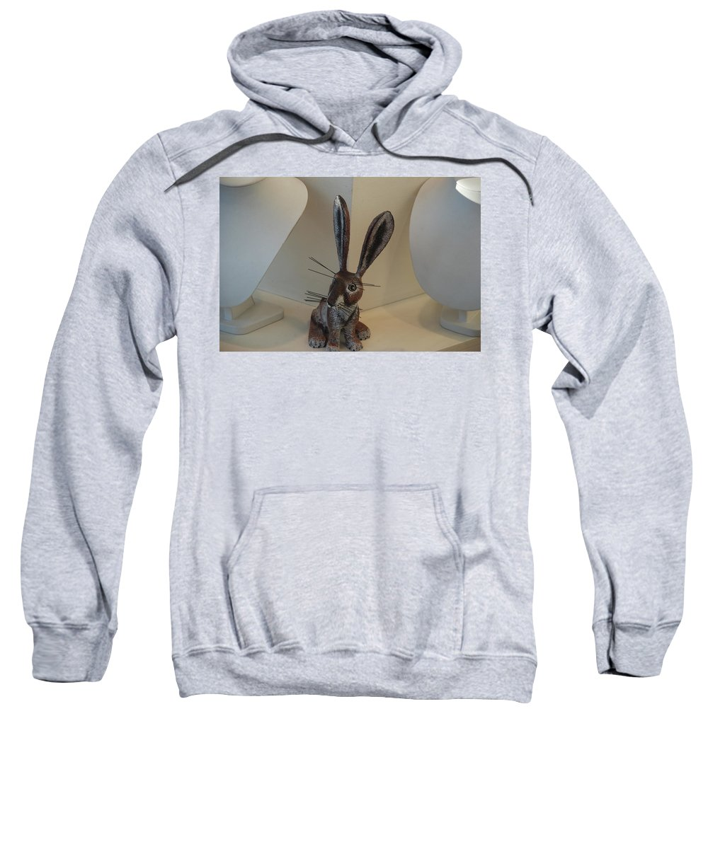 Rabbit Sweatshirt featuring the photograph Boink Rabbit by Rob Hans
