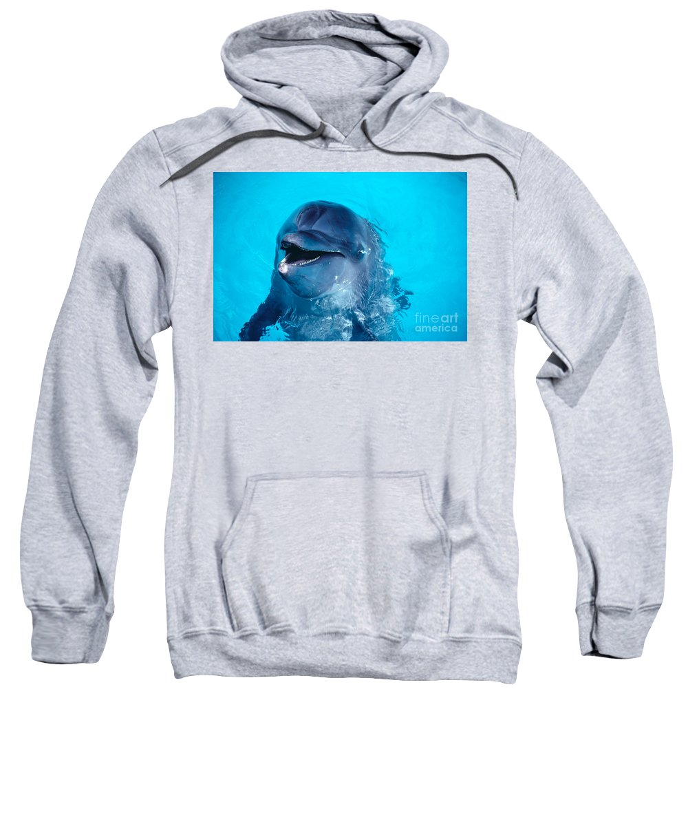 Above Sweatshirt featuring the photograph Bottlenose Dolphin by Ed Robinson - Printscapes