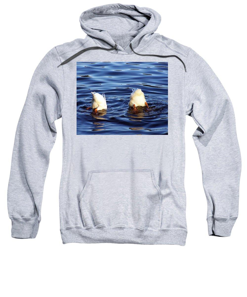 Duck Sweatshirt featuring the photograph Bottoms Up by Francesa Miller