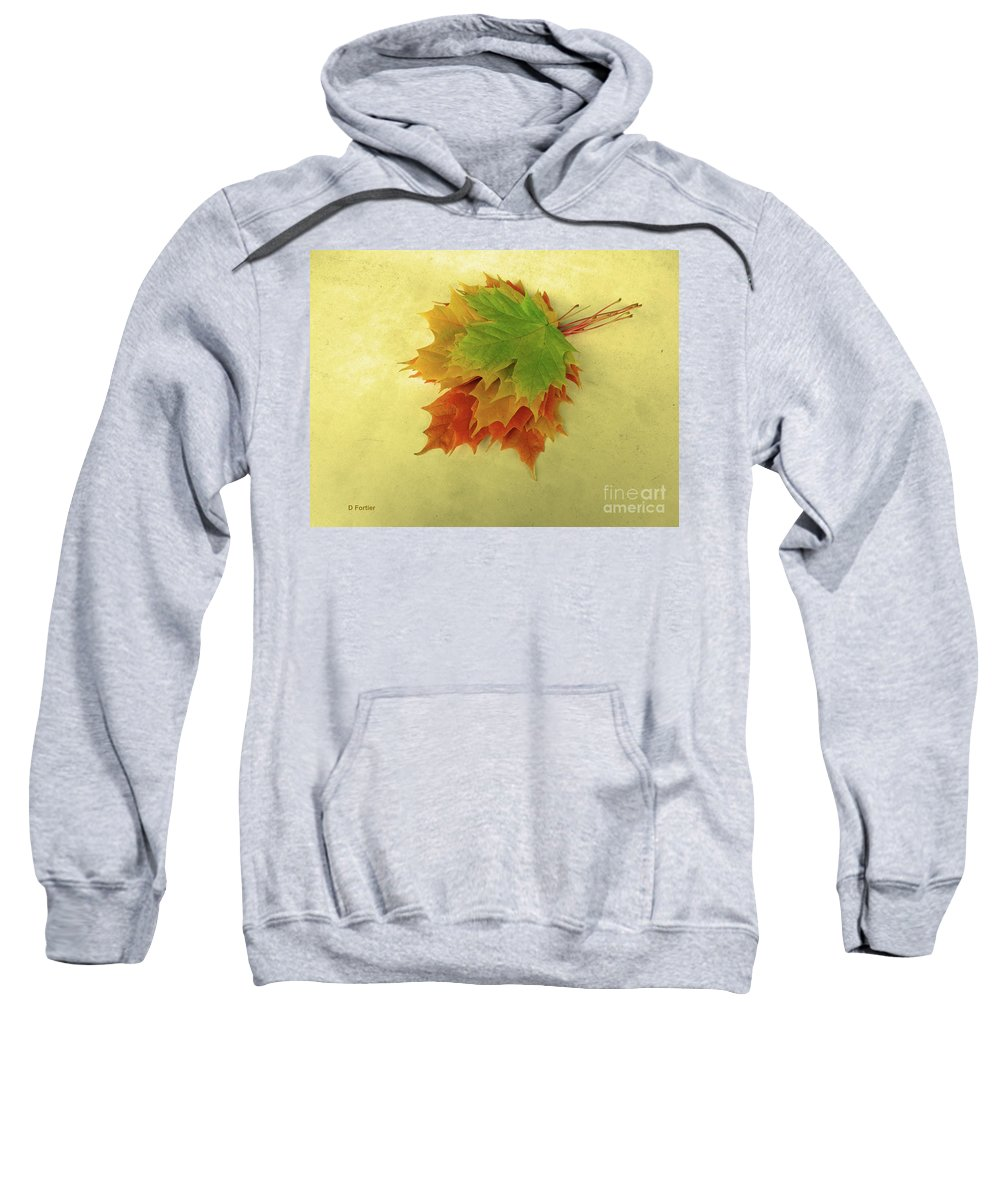 Season Sweatshirt featuring the photograph Bouquet De Feuilles / Bunch Of Leaves by Dominique Fortier