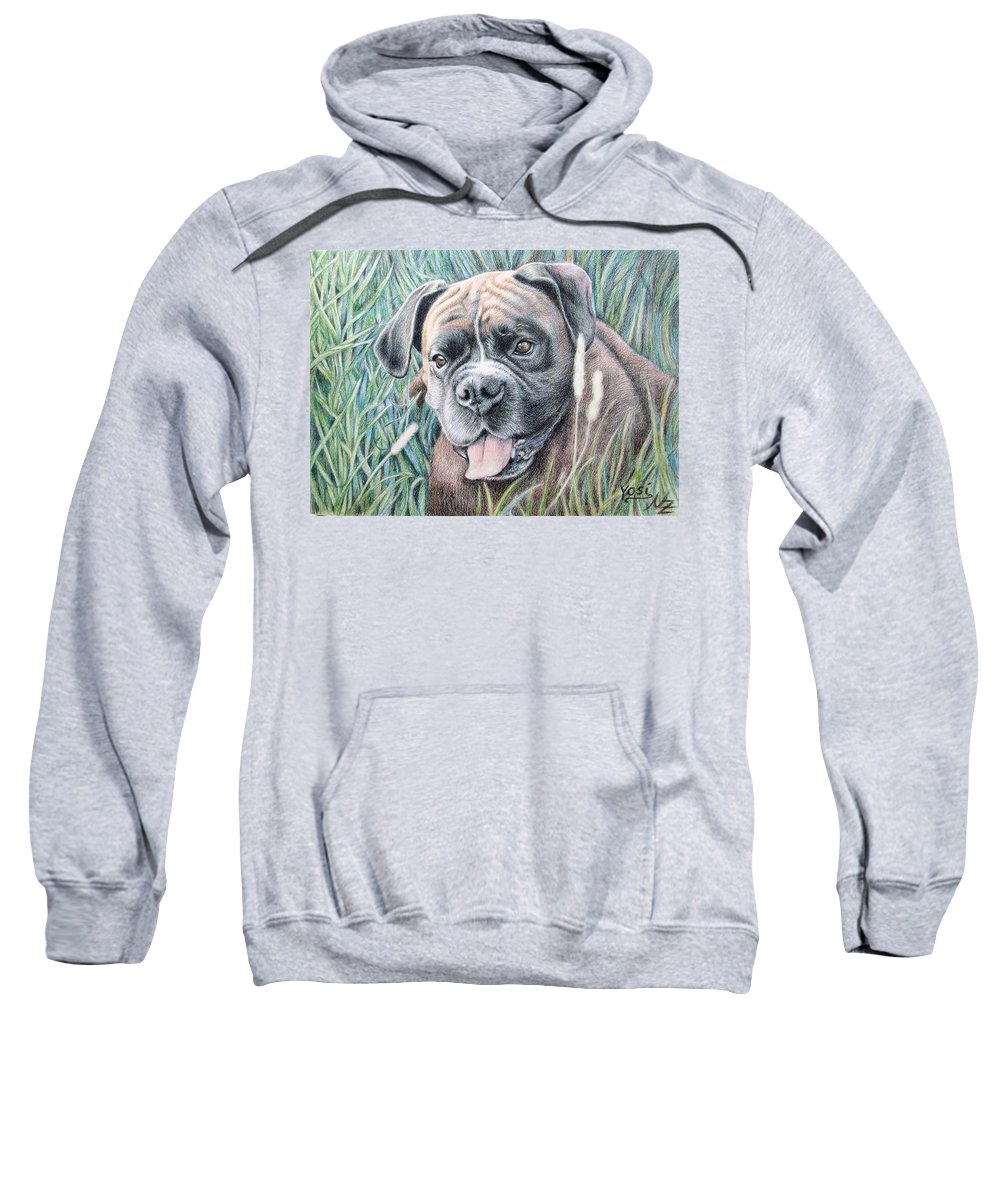 Dog Sweatshirt featuring the drawing Boxer Yosi by Nicole Zeug