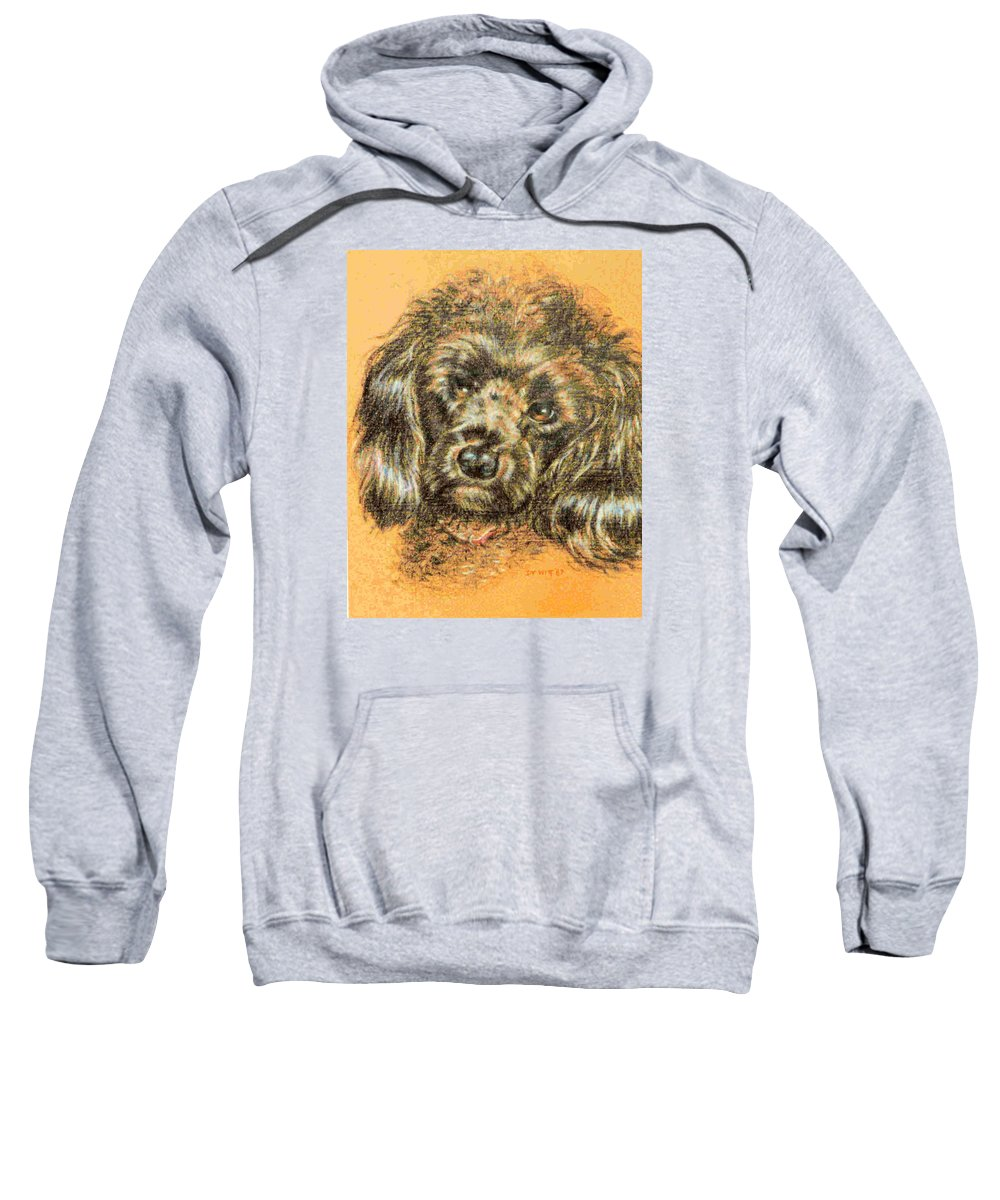 Poodle Sweatshirt featuring the drawing Boy Toy by Dy Witt