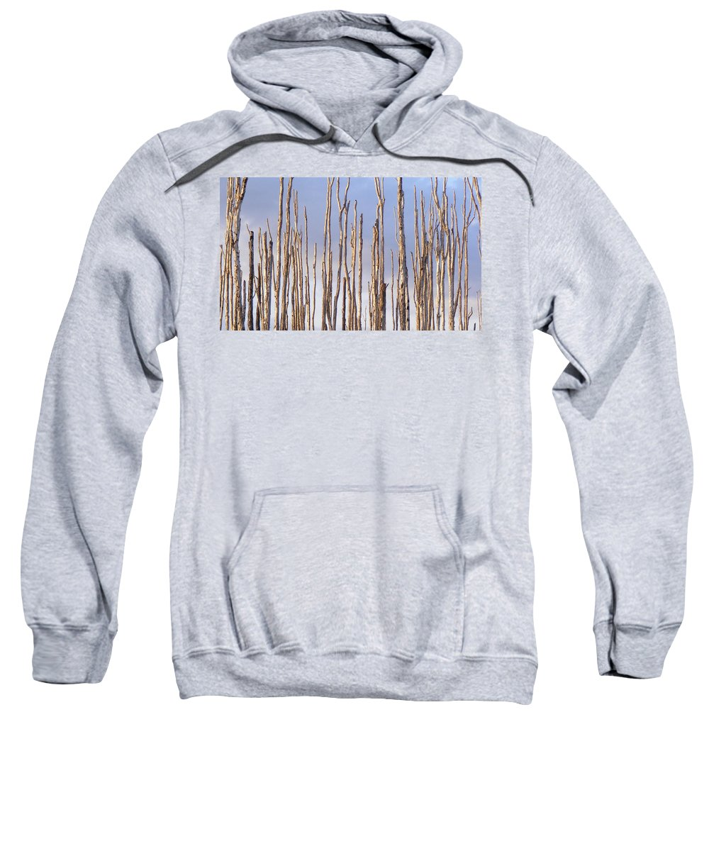 Forest Sweatshirt featuring the photograph Brave Soldiers by Ed Smith