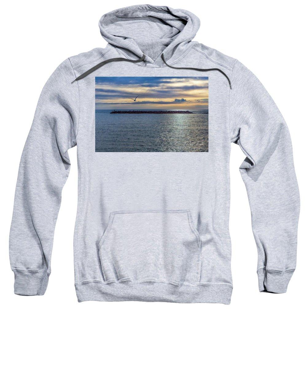 Bird Sweatshirt featuring the photograph Break Water by Pete Federico