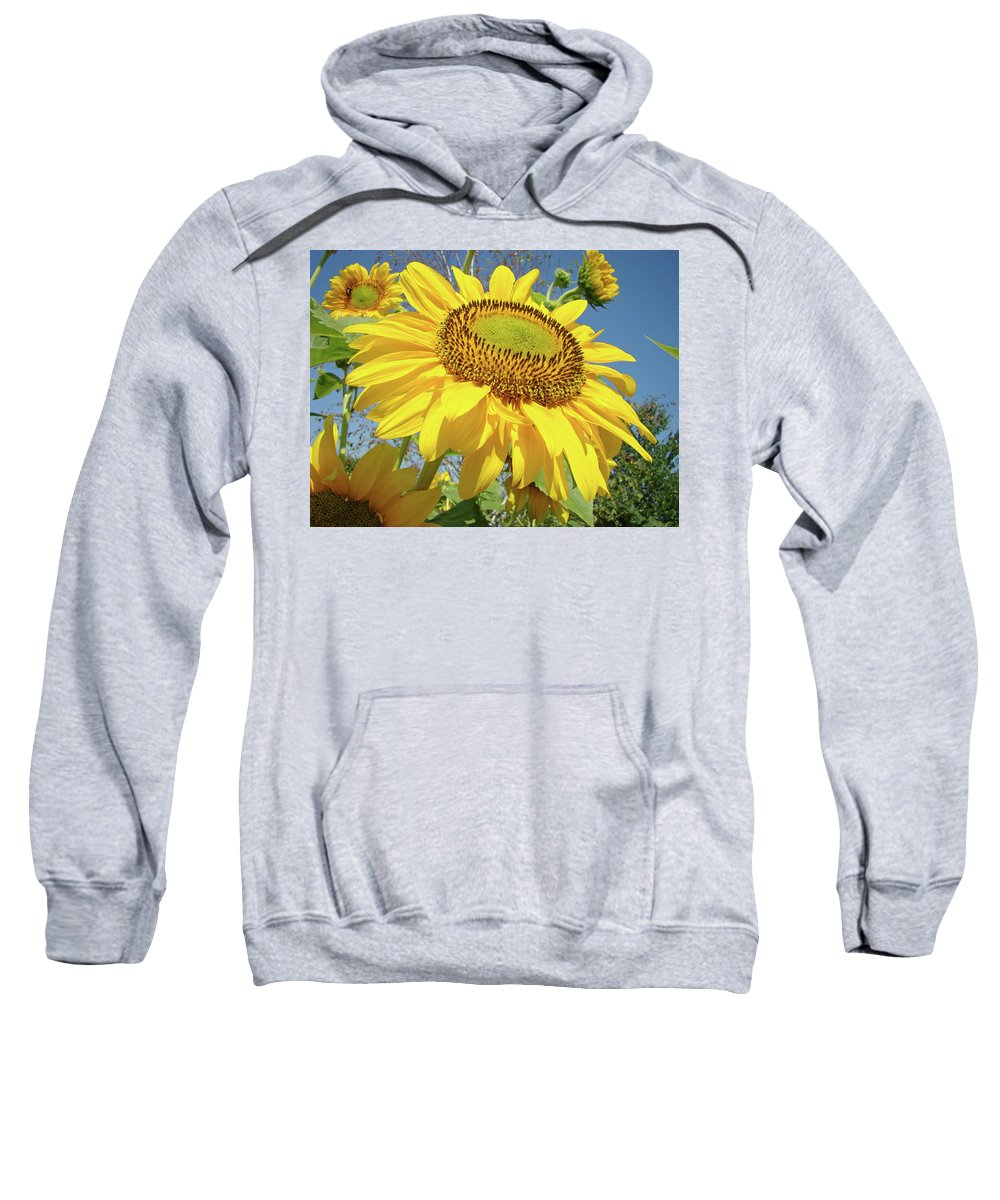 Sunflower Sweatshirt featuring the photograph Bright Sunny Happy Yellow Sunflower 10 Sun Flowers Art Prints Baslee Troutman by Baslee Troutman