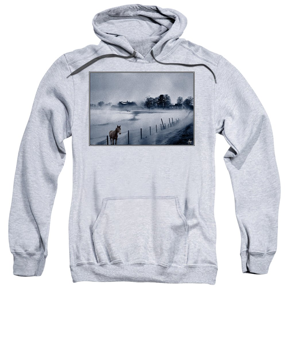 Mist Sweatshirt featuring the photograph Brown Horse On A Blue Farm by Wayne King
