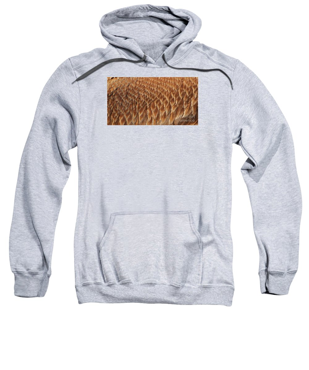 Pelican Sweatshirt featuring the photograph Brown Pelican Wings by Paulette Thomas