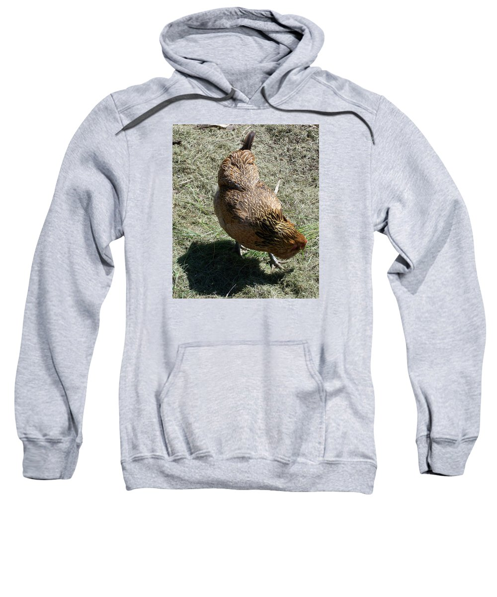 Hen Sweatshirt featuring the photograph Brownie The Hen by Laurie Kidd