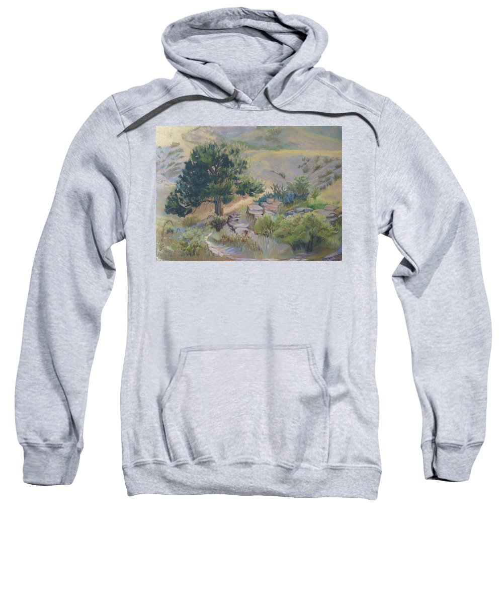 Pine Tree Sweatshirt featuring the painting Buckhorn Canyon by Heather Coen