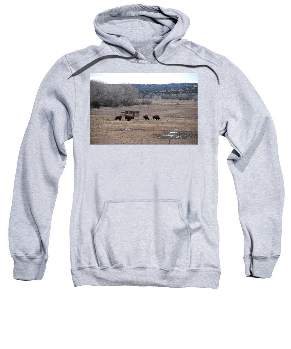 Buffalo Sweatshirt featuring the photograph Buffalo New Mexico by Rob Hans