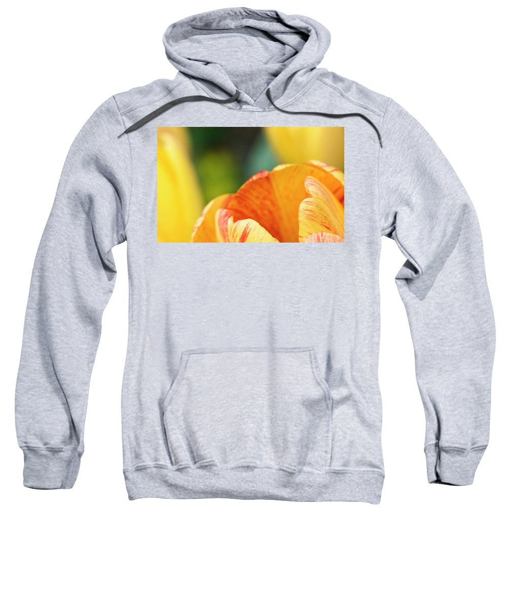 Tulip Sweatshirt featuring the photograph Bug View Of Tulip by Marilyn Hunt