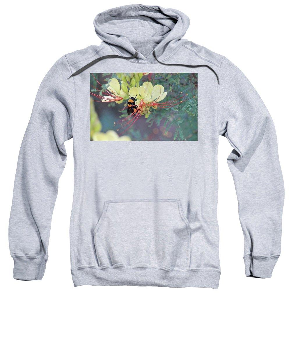 Bumblebee Sweatshirt featuring the photograph Bumblebee Before Dawn 2 by Arin Gaudet Roberts