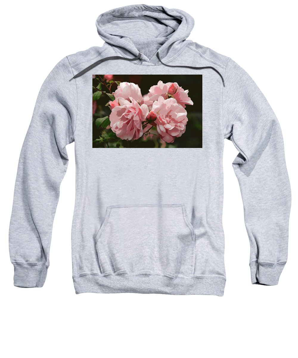 Flower Sweatshirt featuring the photograph Bunch Of Roses by Erin Larcher