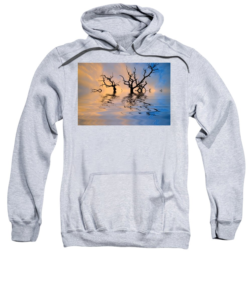 Original Art Sweatshirt featuring the photograph Slowly Sinking by Jerry McElroy