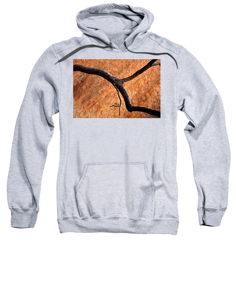Gum Tree Sweatshirt featuring the photograph Burnt Orange by Mike Dawson