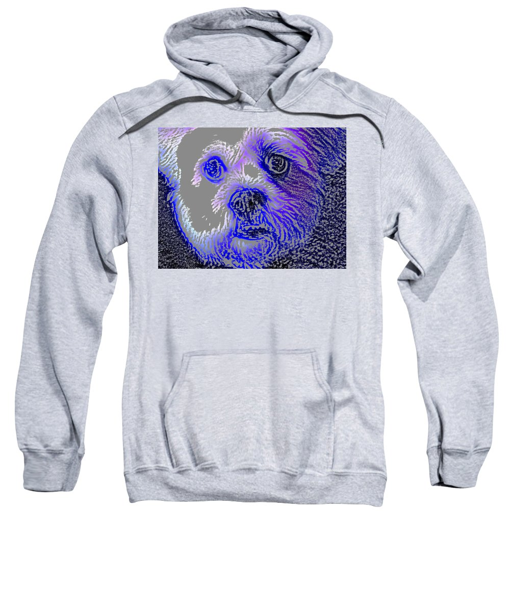 Dog Sweatshirt featuring the photograph Buster Photo by Wayne Potrafka