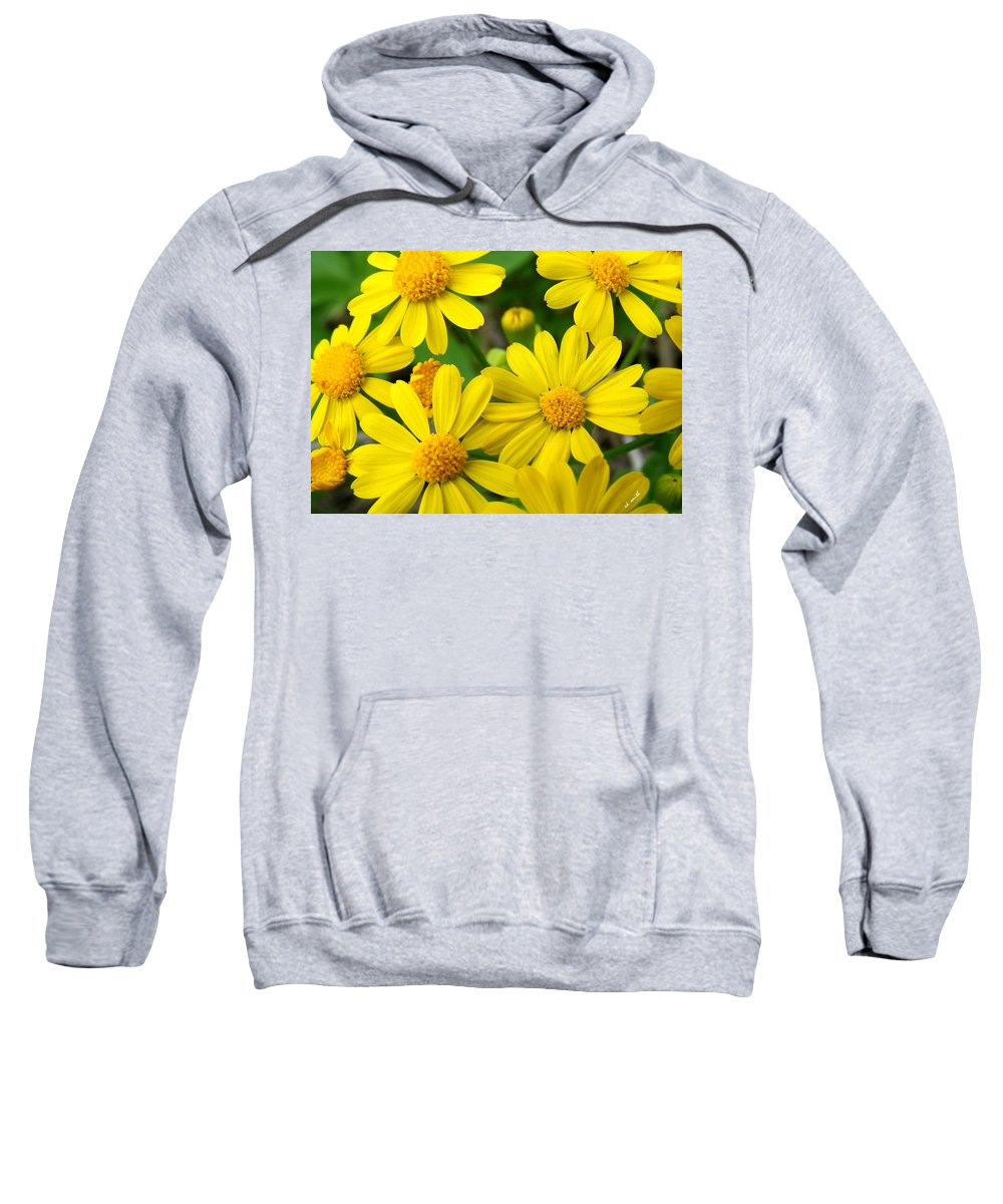 Butter Fields Sweatshirt featuring the photograph Butter Fields by Ed Smith