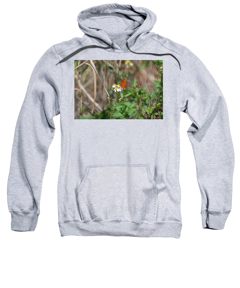 Butterfly Sweatshirt featuring the photograph Butterfly Flower by Rob Hans
