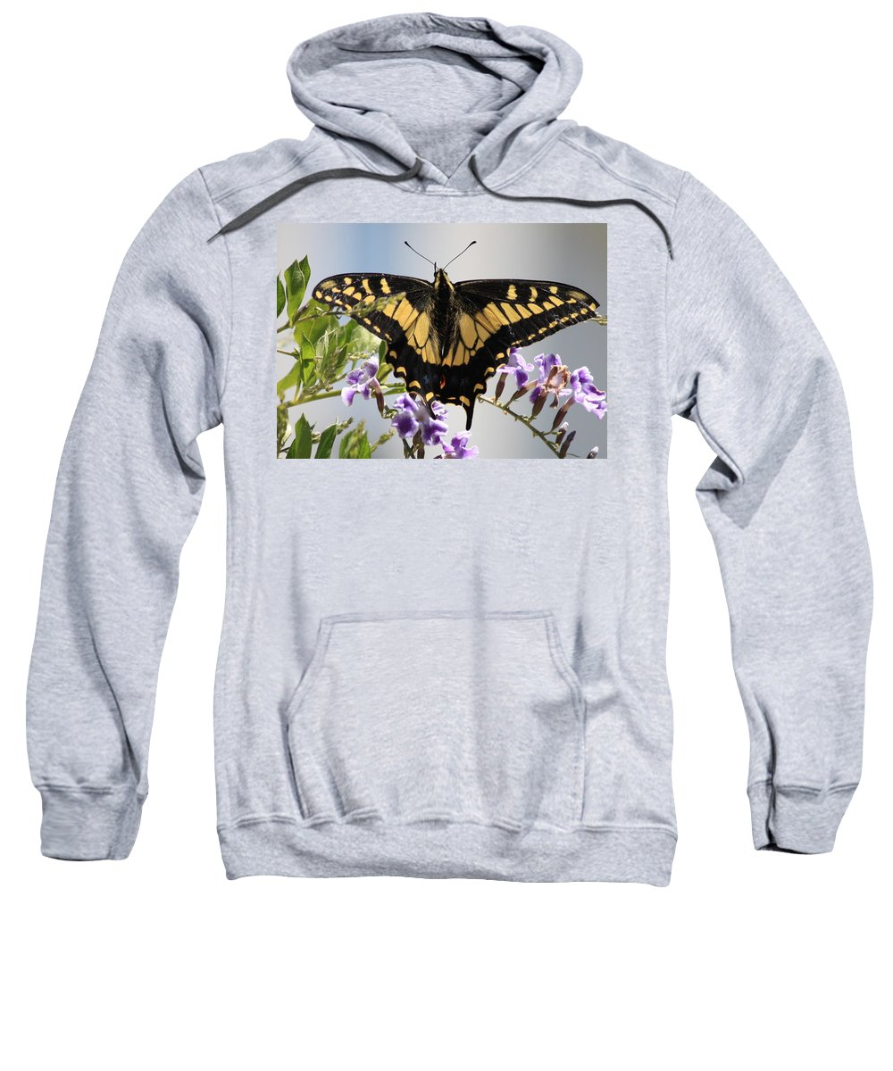 Butterfly Sweatshirt featuring the photograph Butterfly In My Garden by Carol Groenen