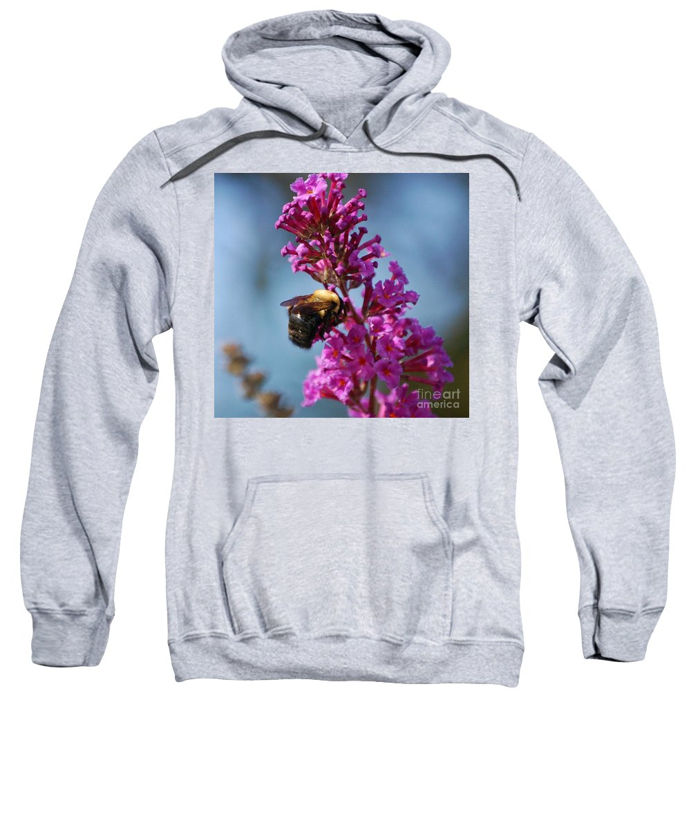Bee Sweatshirt featuring the photograph Buzzed by Debbi Granruth
