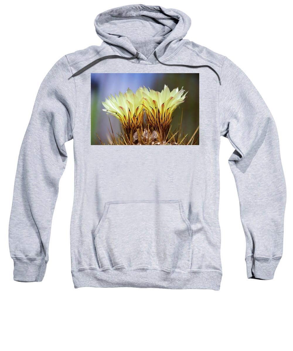 Monks Hood Cactus Sweatshirt featuring the photograph Cactus Life by Raul Rodriguez