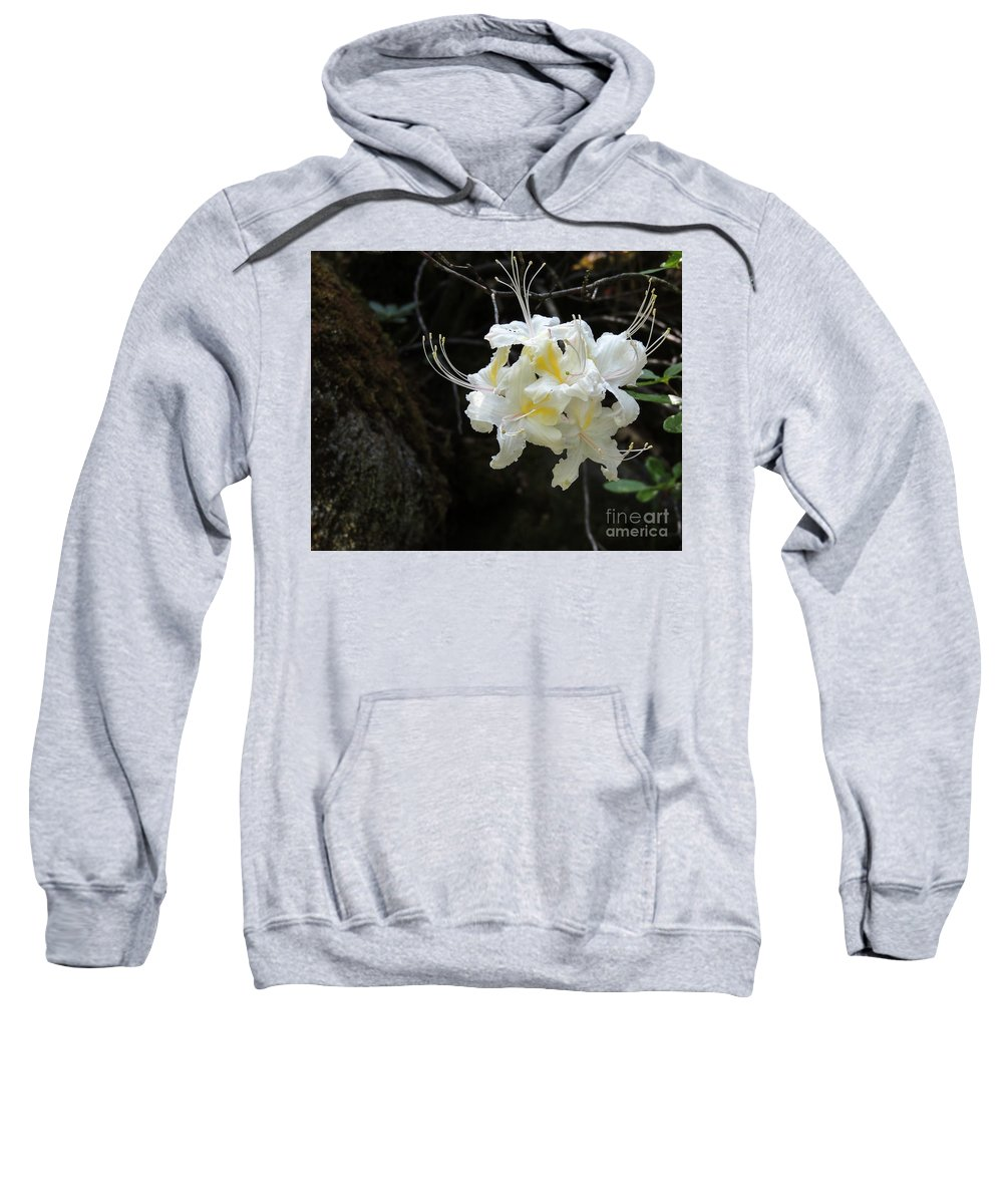 Bloom Sweatshirt featuring the photograph Cammo Front by Grant Bolei