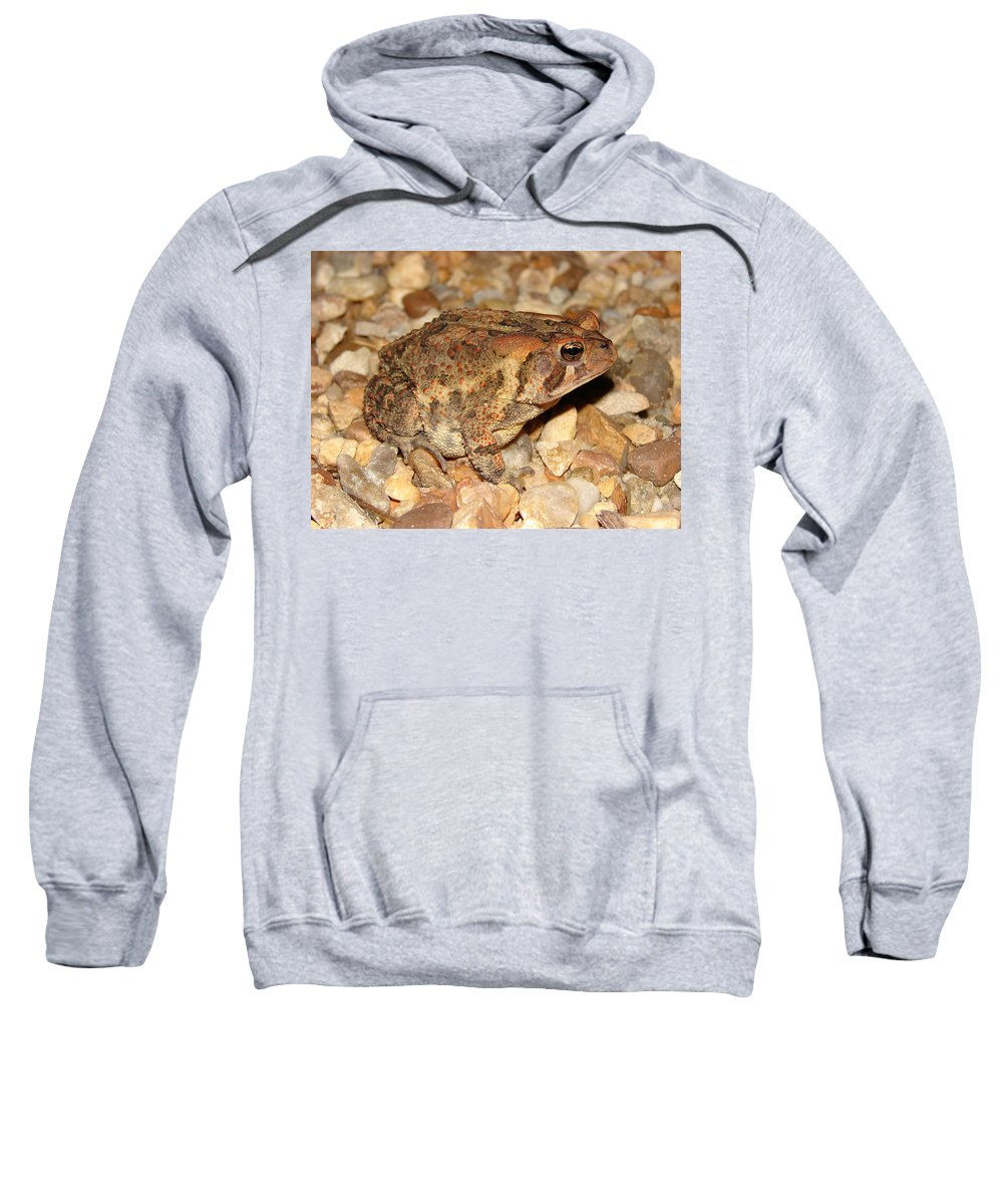 Camouflage Sweatshirt featuring the photograph Camouflage Toad by Brett Winn
