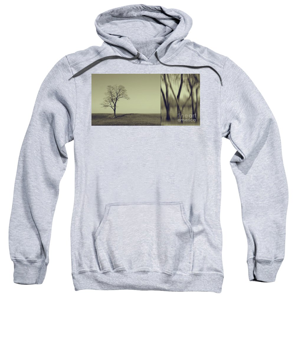 Chicago Sweatshirt featuring the photograph Can You Hear My Silent Words Whispering Along The Wind by Dana DiPasquale