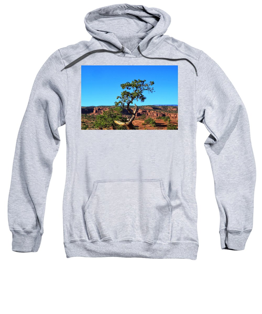 Utah Sweatshirt featuring the photograph Capitol Reef 6 by Ingrid Smith-Johnsen