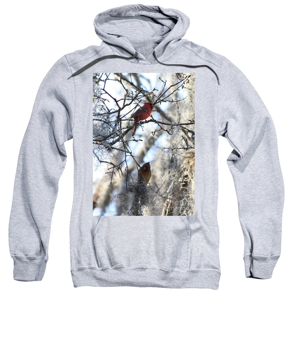 Wildlife Sweatshirt featuring the photograph Cardinals In Mossy Tree by Carol Groenen