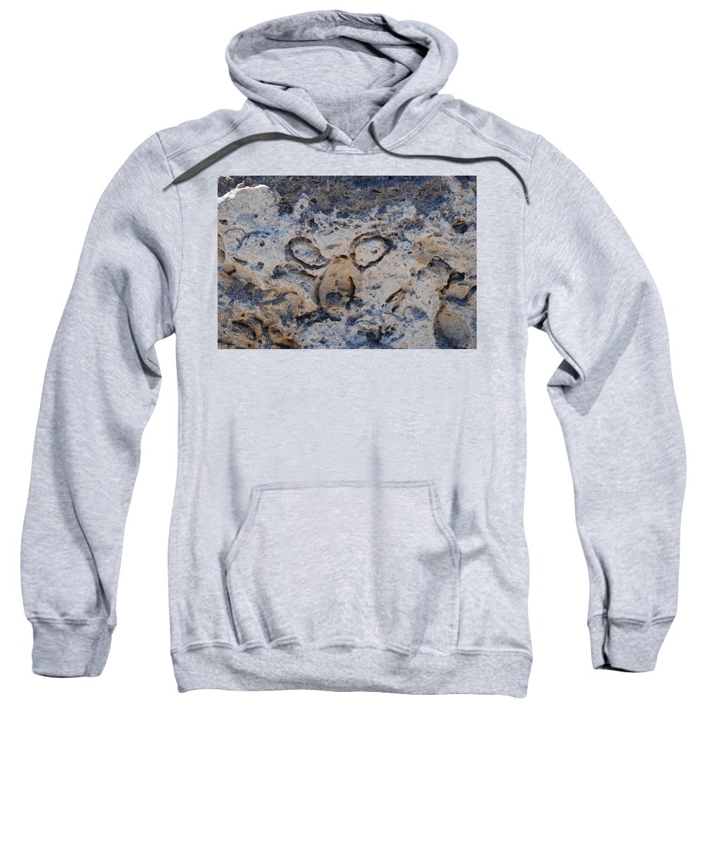 Ocean Sweatshirt featuring the photograph Carved Catface by Rob Hans