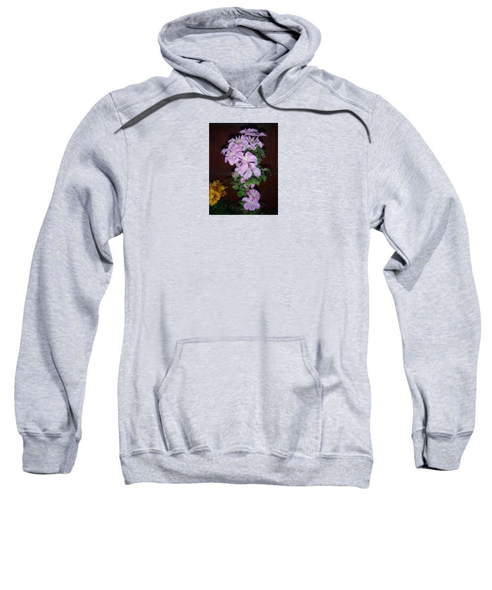Clematis Cascade Sweatshirt featuring the photograph Cascade by Janet Giles
