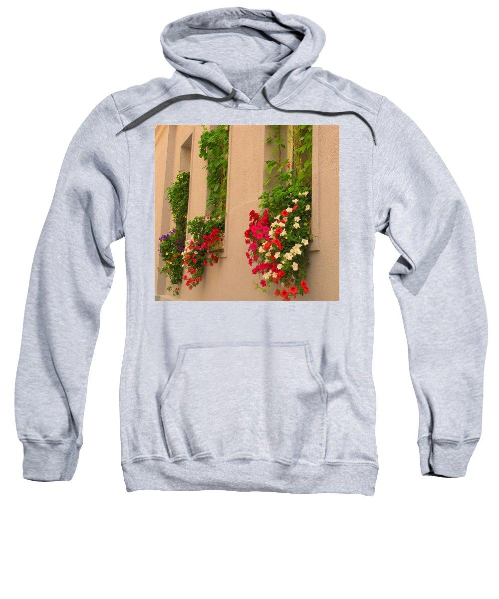 Flowers Sweatshirt featuring the photograph Cascading Windows by Ian MacDonald