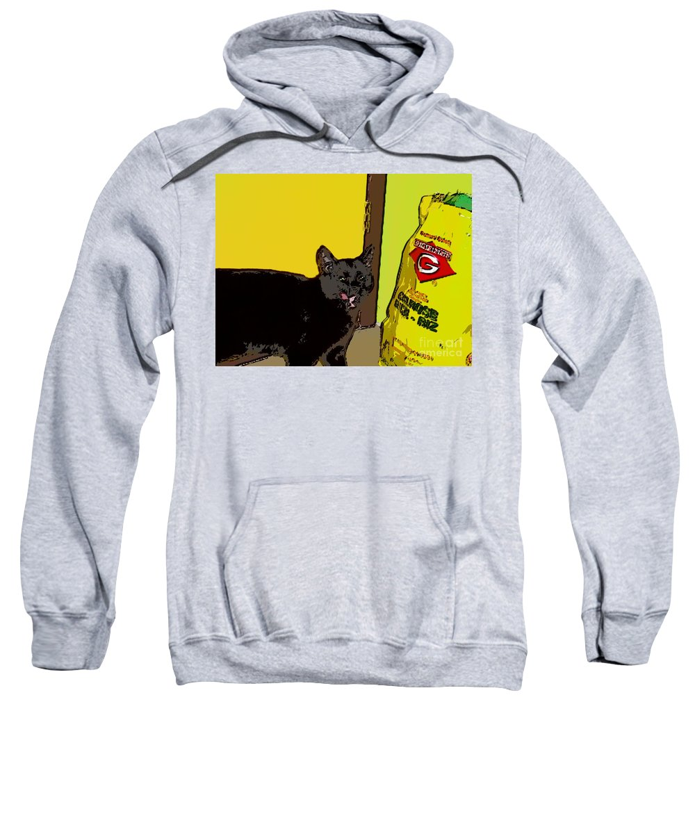 Photograph Cat Black Rice Yellow Critter Green Red Sweatshirt featuring the photograph Cat And Rice by Seon-Jeong Kim