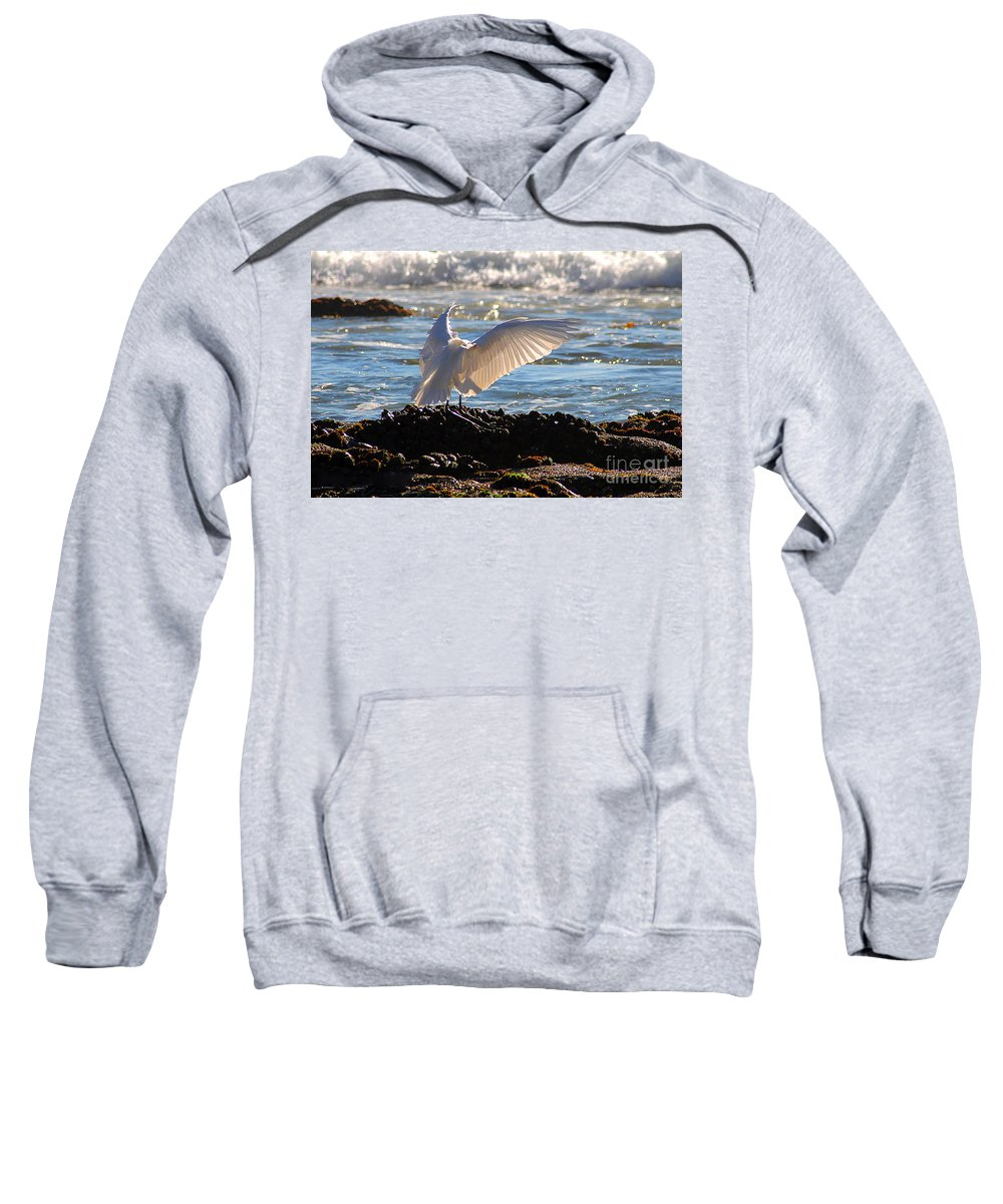 Clay Sweatshirt featuring the photograph Catching Rays At The Beach by Clayton Bruster