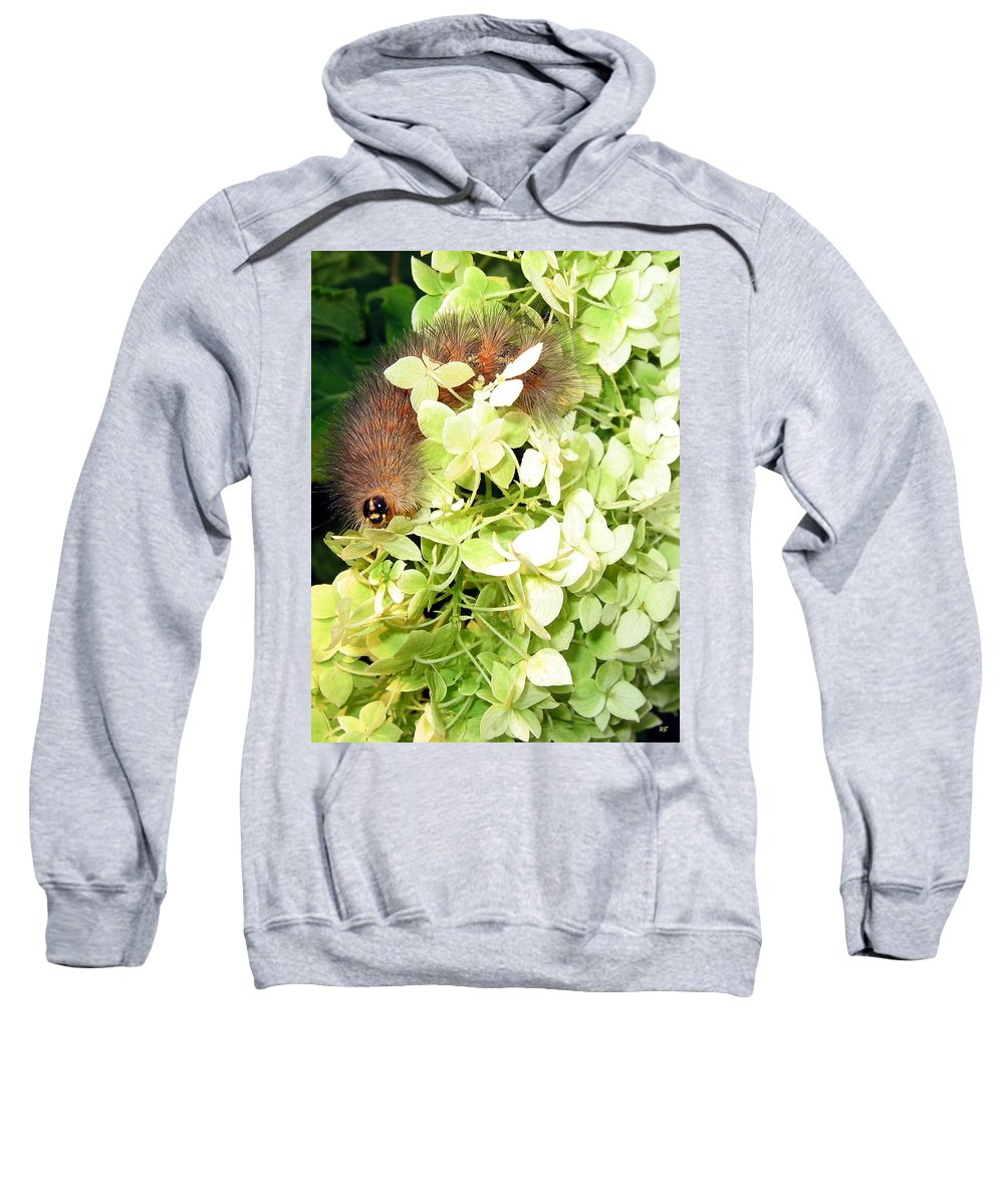 Caterpillar Sweatshirt featuring the photograph Caterpillar by Will Borden