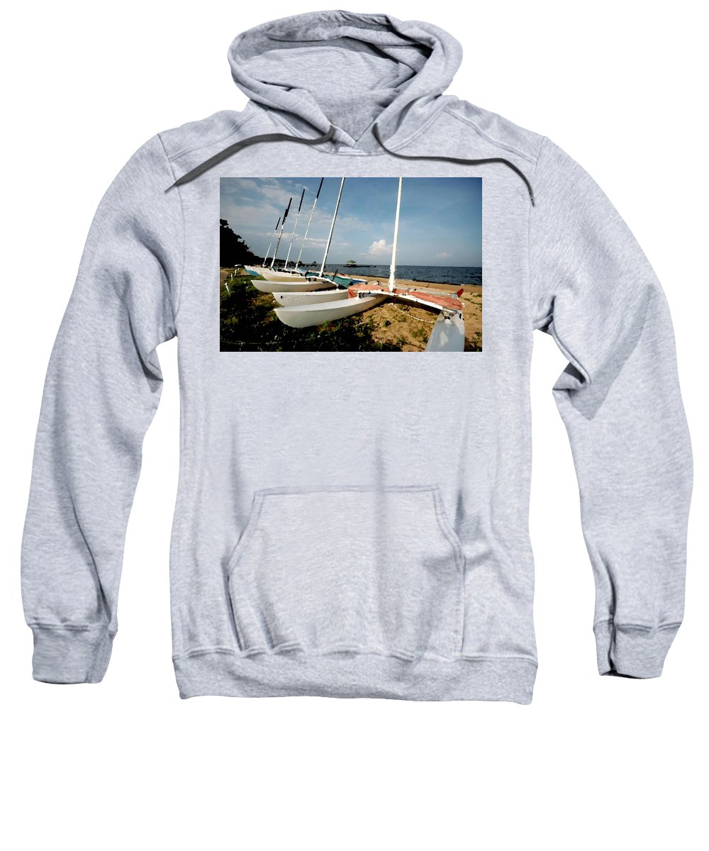Pelican Sweatshirt featuring the digital art Cats by Michael Thomas