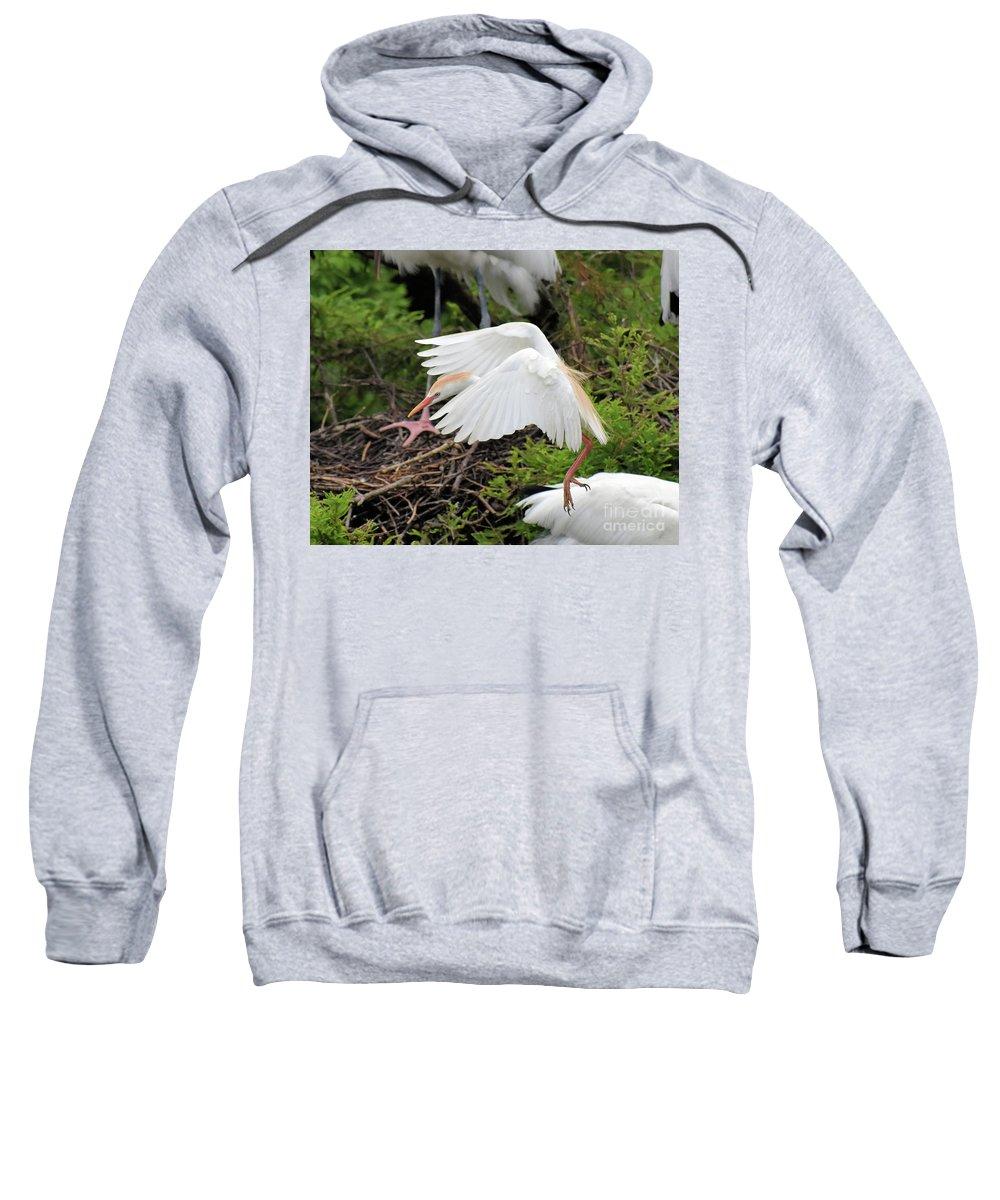 Egret Sweatshirt featuring the photograph Cattle Egret by Jim Lapp